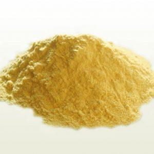 Lycopodium Powder (Heavy) / Lycopodium Clavatum Spores / Dragons Breath